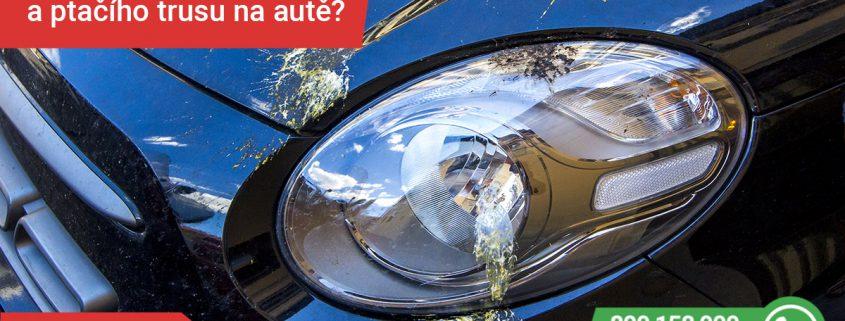 Jak vyzrát na ptačí trus a jiné nečistoty na autě?